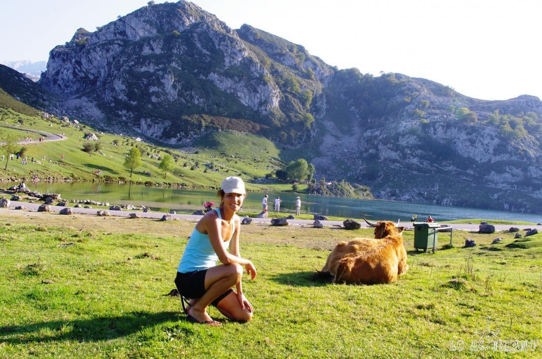 El lago de Enol es el más grande de los dos lagos de Covadonga, quedando situado a unos 10 kilómetros de Covadonga y a unos 25 de Cangas de Onís.  Se encuentra situado a unos 1.070 metros de altitud, dentro del macizo occidental (Picos de Europa), teniendo un calado máximo de unos 25 metros, con un máximo de longitud de 750 metros y una anchura de unos 400 metros.