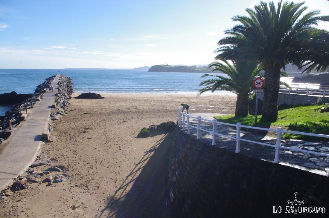 Aquí la razón porque se le da ese nombre a la playa de la Palmera, de Candás.