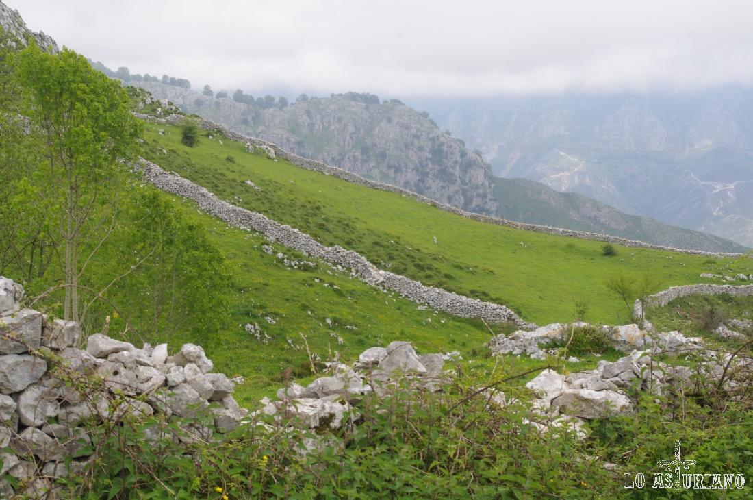 Llegamos por fin a Jaces; en esta majada puedes ver construcciones de piedra, que separan las parcelitas.