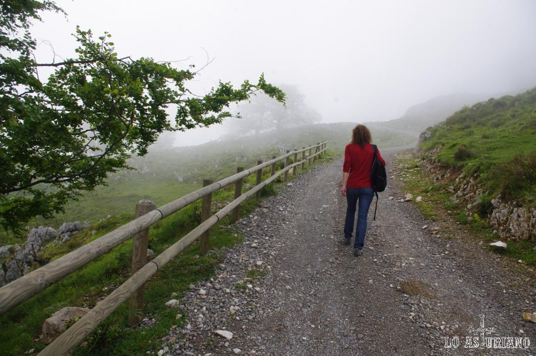 Niebla en Oceño