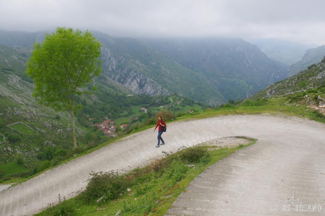 Una de las muchas pistas que te invitan al senderismo en Peñamellera Alta.