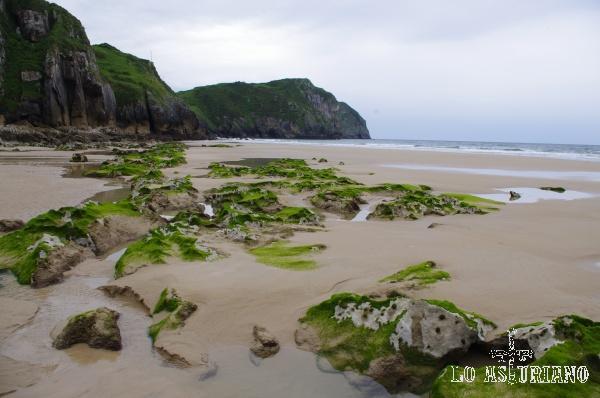 Bonita vista de rocas verdes en la playa de Vidiago, Llanes.