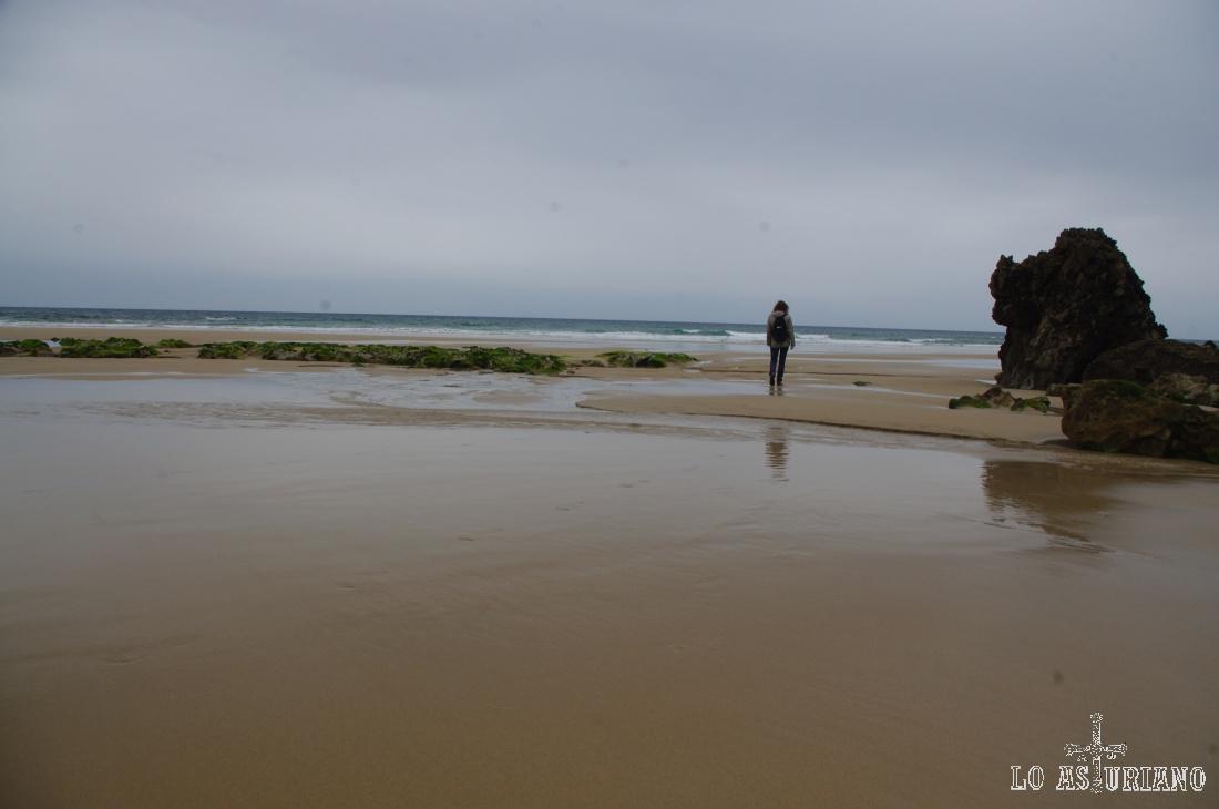 Podemos seguir andando a la derecha y encontrar la segunda parte de la playa, que ahora, en bajamar, tenemos a la vista.