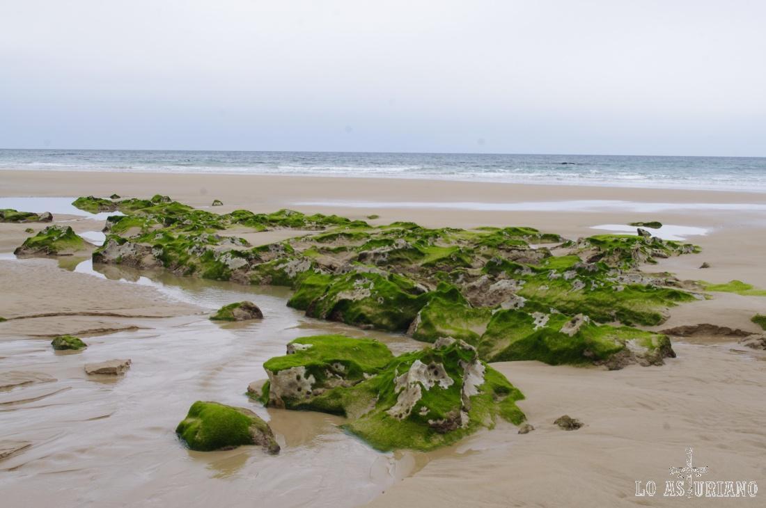 Esta preciosa playa tiene unos 250 metros de ancho y está separada en 2 partes cuando hay pleamar.