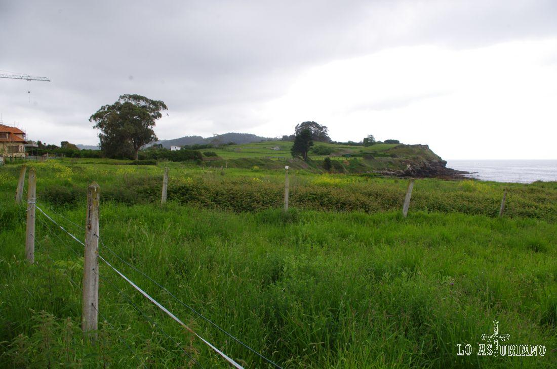 """En primavera, casi cualquier ruta por Asturias, tiene el color """"verde bestia""""... :)"""