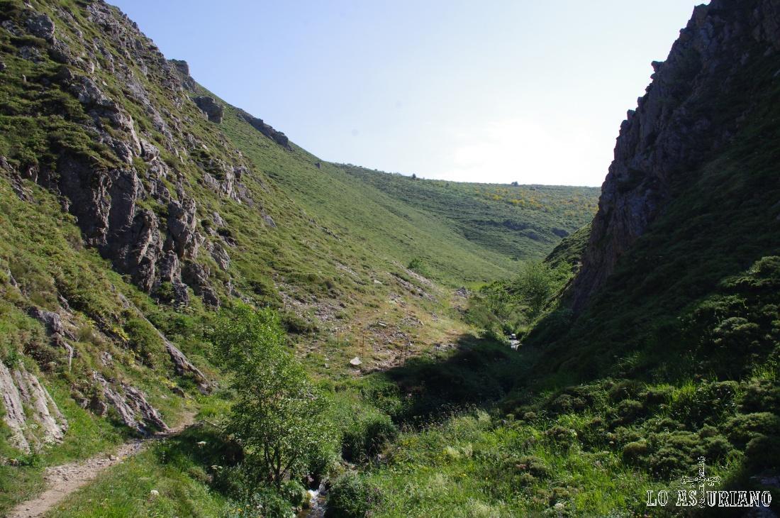 Después de la curva que hace el arroyo al fondo, podremos ya subir por la ladera hacia la braña de la Mesa.