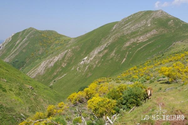 Los Cumales y los Bueis, 2 preciosas cimas somedanas.
