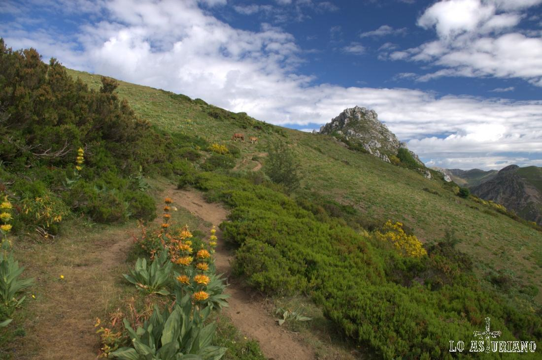 Preciosa senda con la que vamos tomando la curvada ladera hacia el Monte Grande, que está al otro lado.