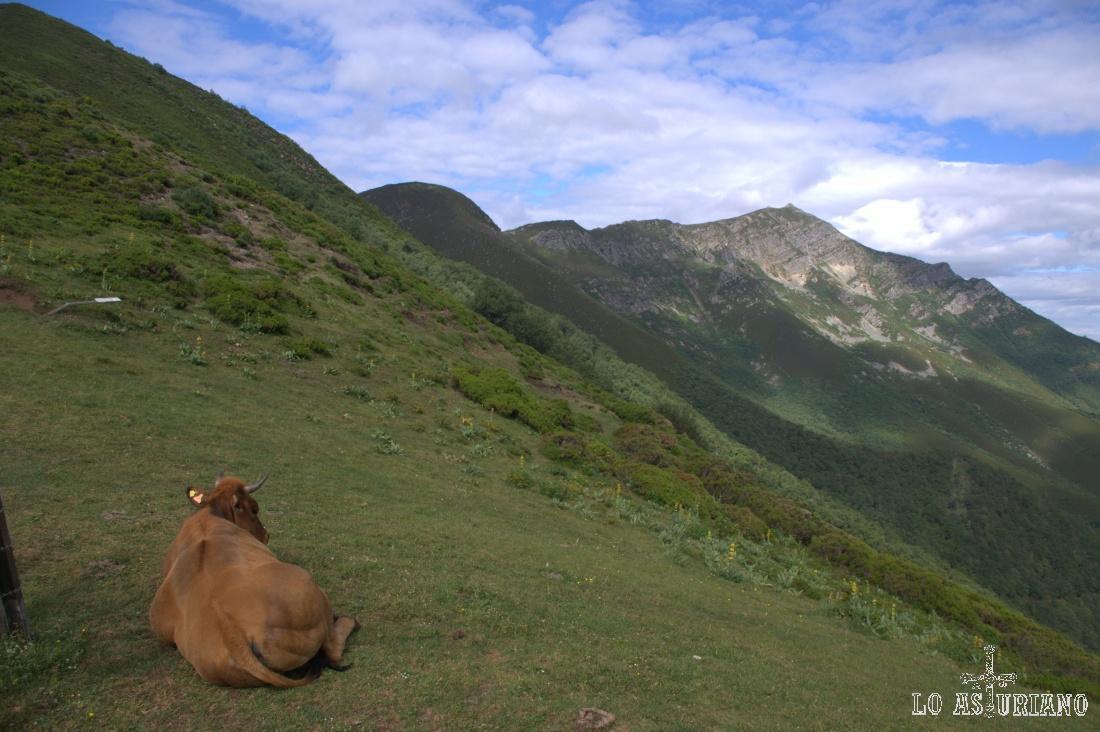 Subiendo al Cuervo, vistas de La Ferreirúa
