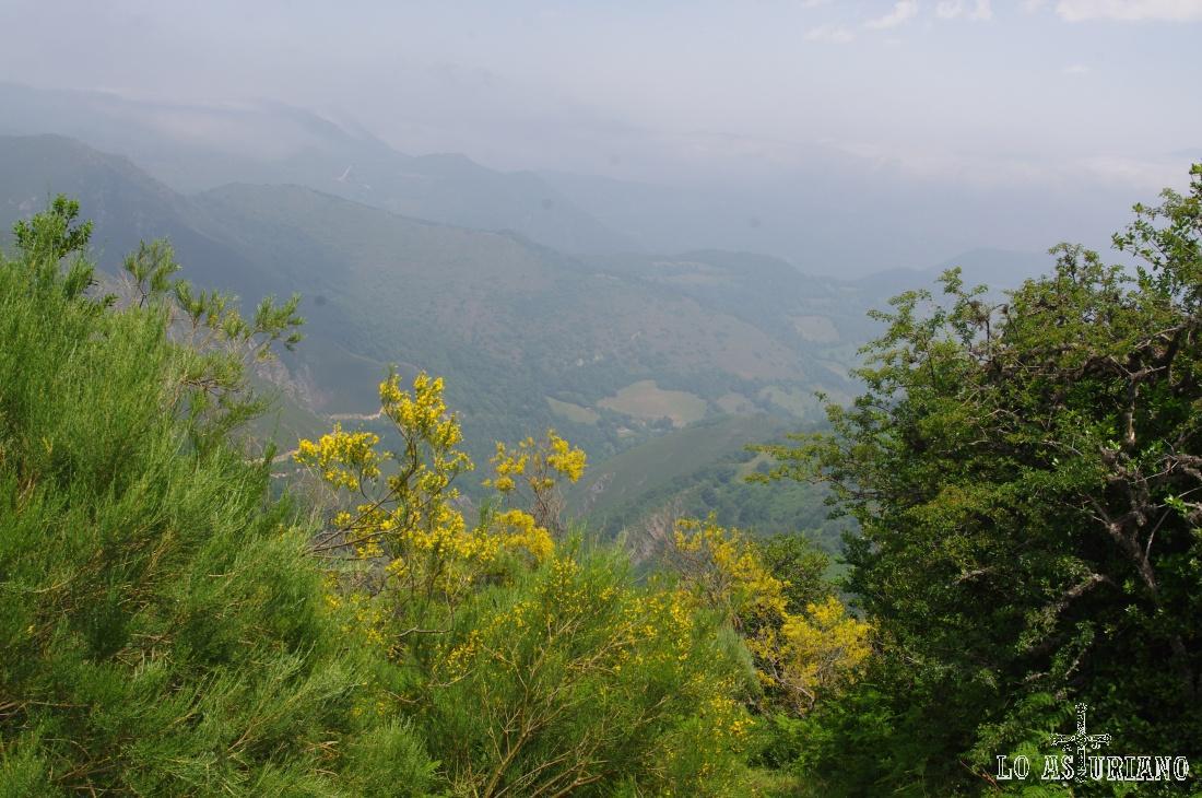 Valle del río Val de Carzana.