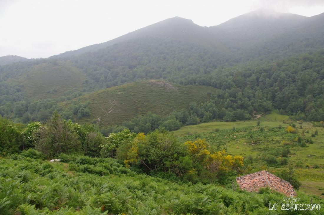 Verde abrumador en el entorno mágico de Llamaraxil, en la ruta vaqueira de Teverga.