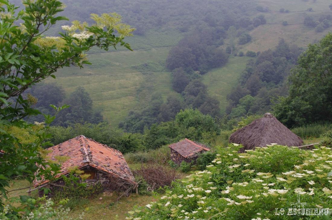 Cabañas en Tuiza.