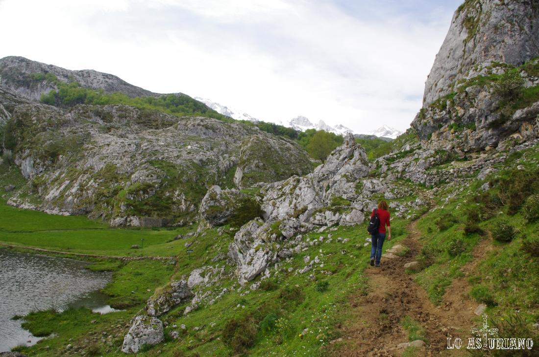En el extremo de la Ercina tienes este paso en entre las rocas, hacia las majadas de este lado de los lagos.