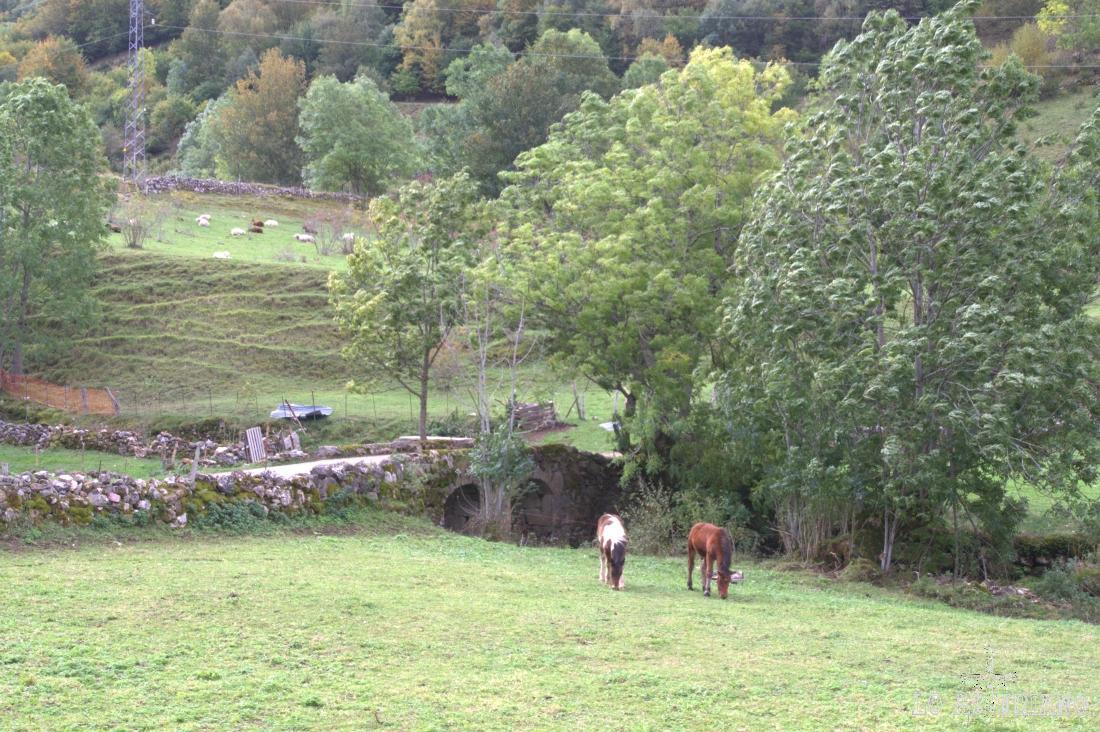 El camino cruza el puente sobre el río Valle.