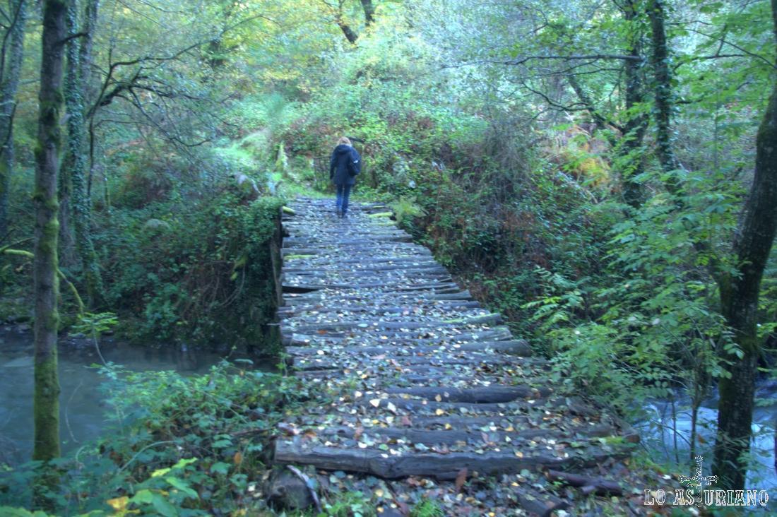 Río Ibias en el puente de Basancada
