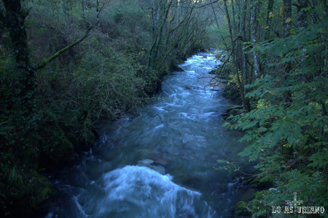 El río Ibias ruge con fuerza bajo el puente de Basancada.