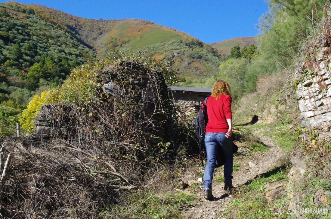 Al fondo, alcanzamos a ver el Pico de Peñas Prietas, de 1472 msnm.