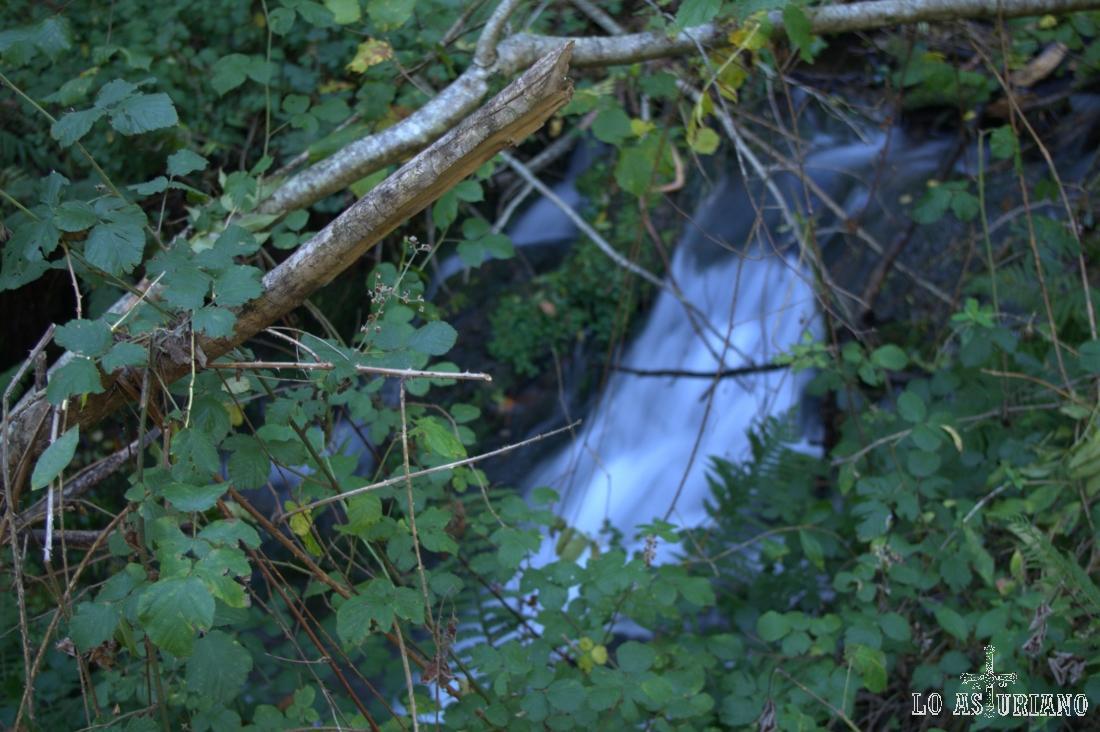 El arroyo Calecho es corto, pero el espectáculo que ofrece para los sentidos, es impresionante.