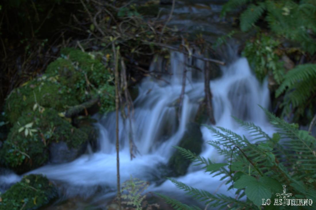 Cascada en el arroyo Calecho.
