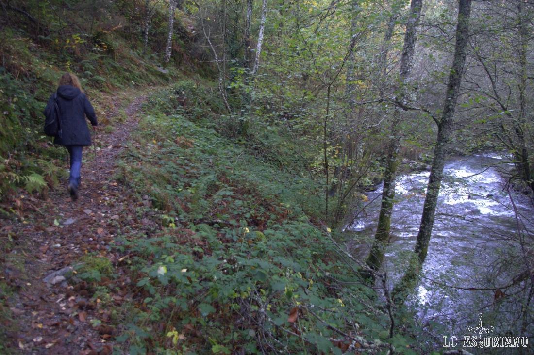Una vez hemos vuelto a atravesar el río Ibias, ascendemos en zigzag por el bosque del Posadoiru.
