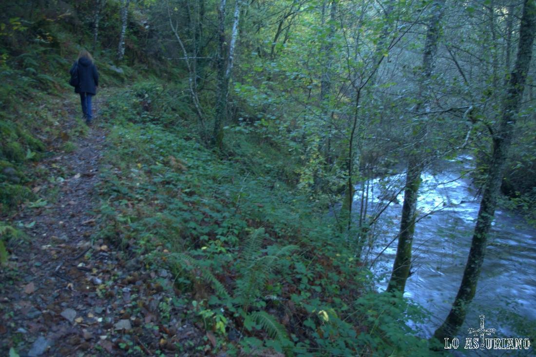 Subiendo desde el río Ibias, hacia el bosque de Posadoiru.
