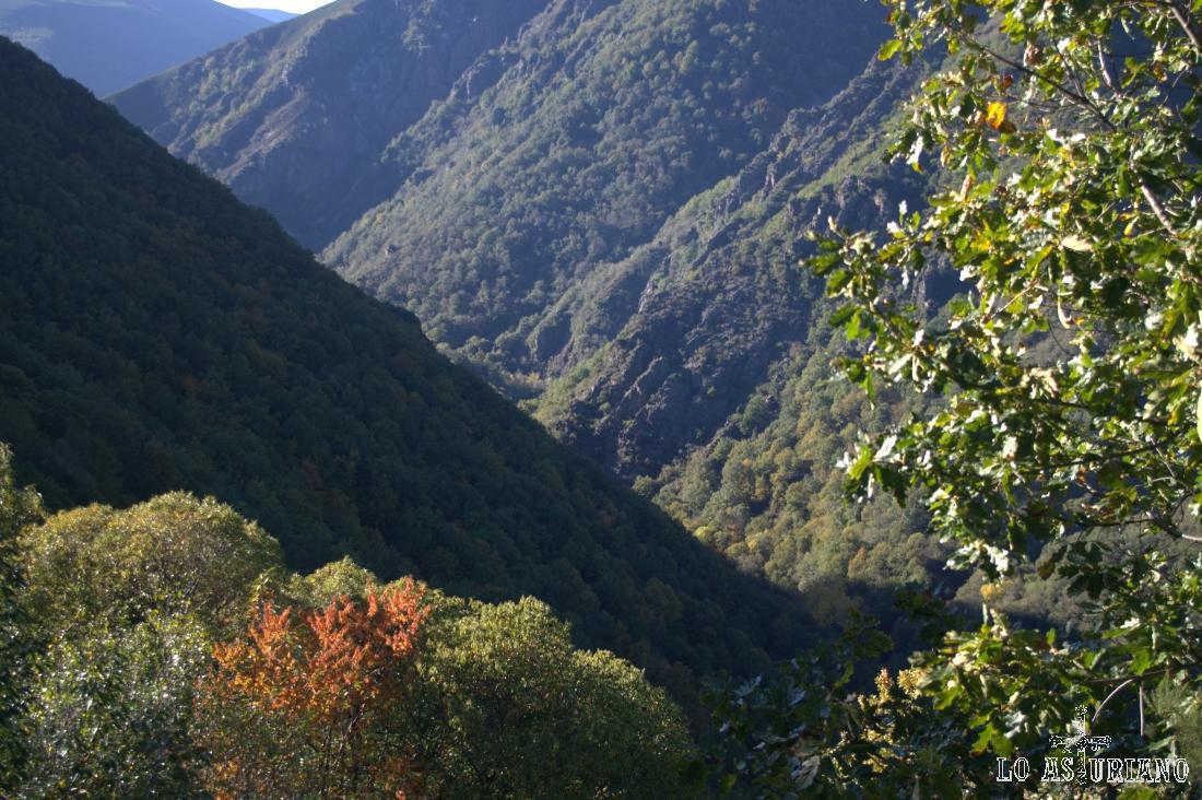 Valle por el que transita el río Ibias, en el límite de los concejos Ibias-Degaña.
