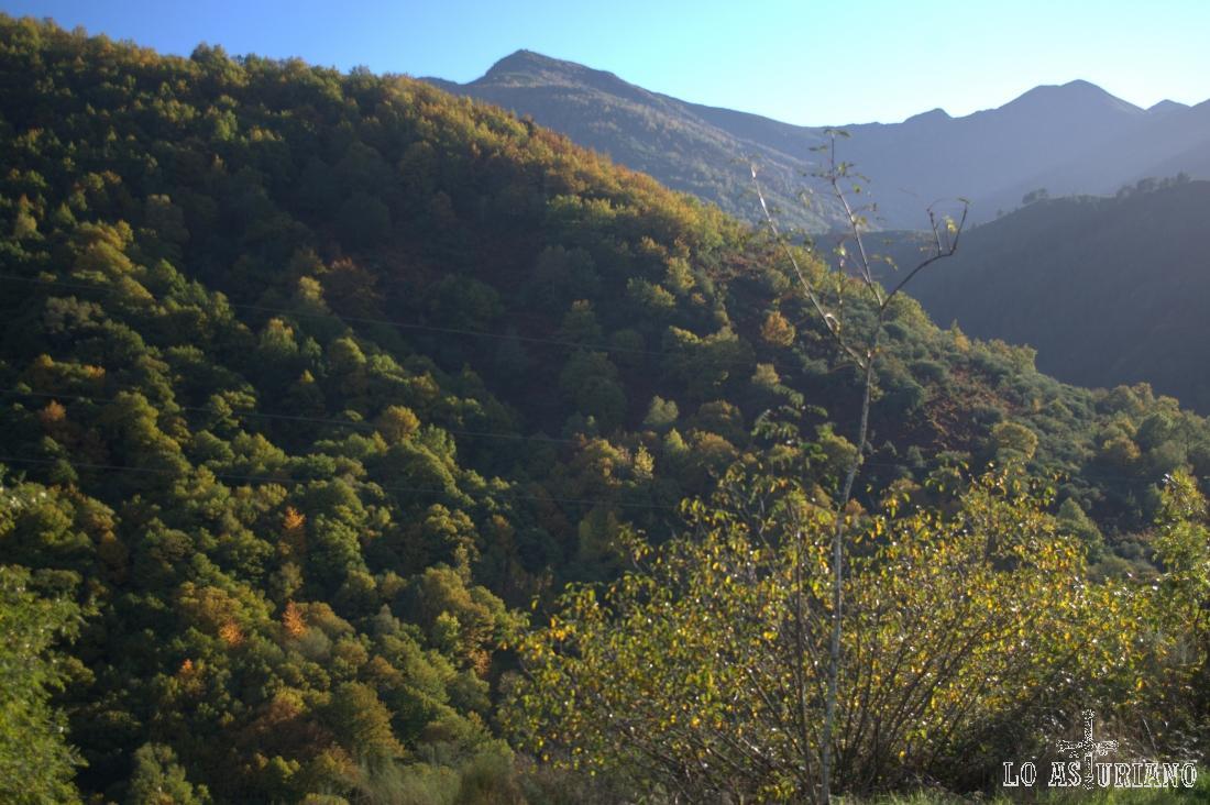 La sierra de Moreda al fondo.