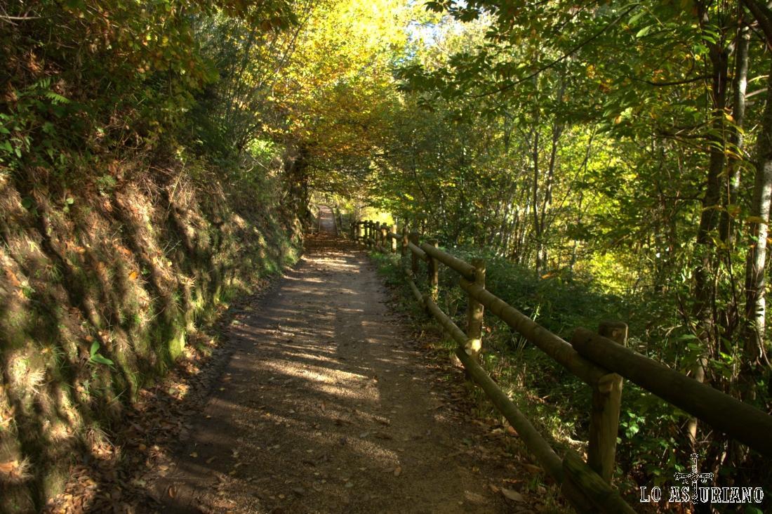 Este es el camino desde Sisterna hacia el cementerio, siguiendo luego la Senda Moura o el camino hacia El Corralín.