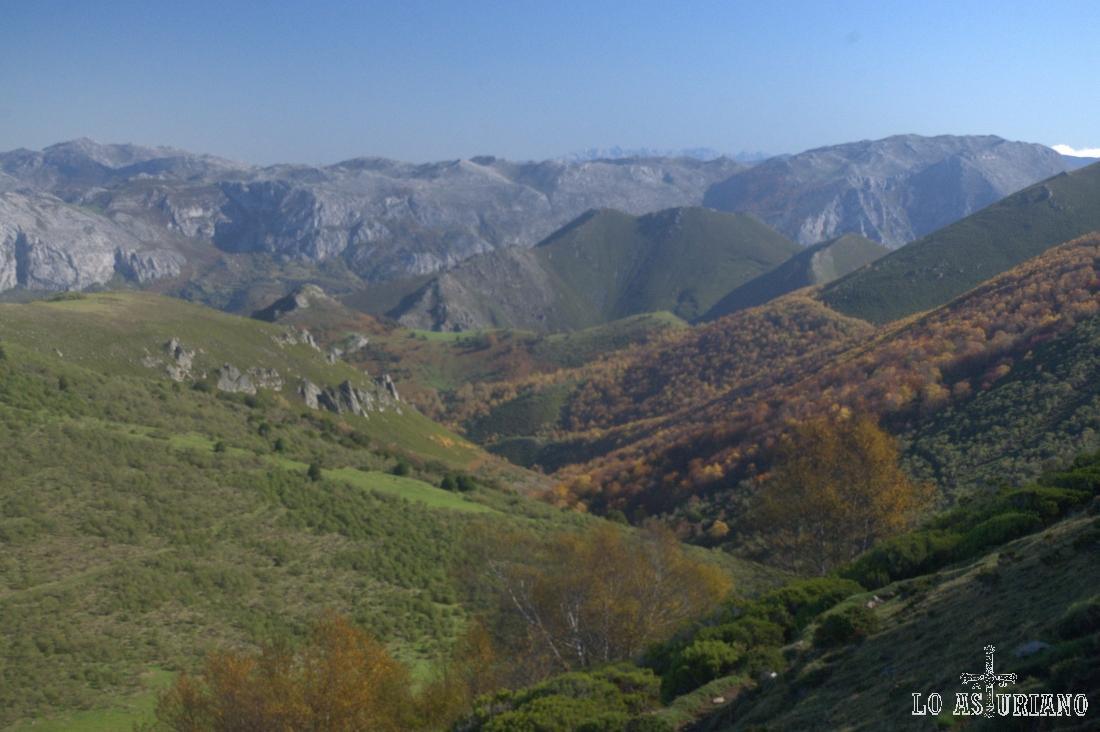 Cuidadosamente vemos: el valle del Bayo; detrás en verde, Sobrepalacios y Paraxinos, y a la derecha Peña Sobia.