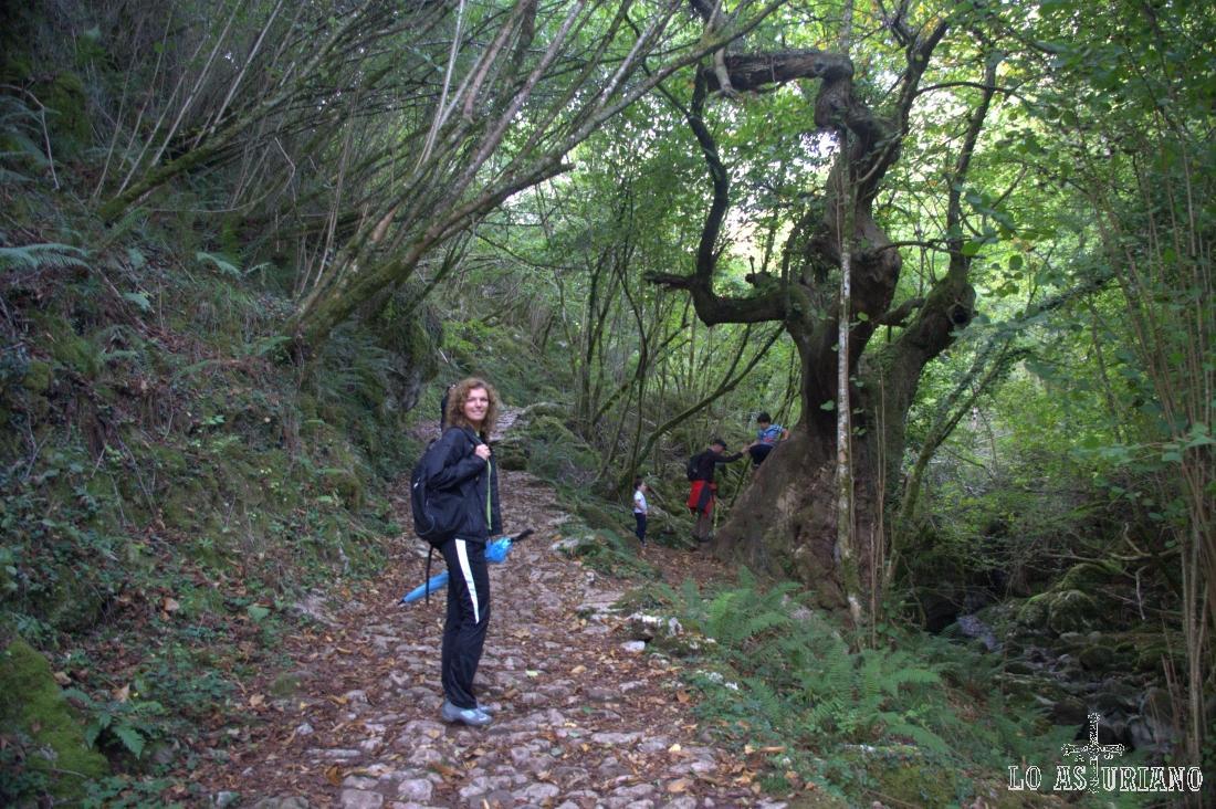 La senda sube 200 metros de desnivel en 2 km hasta Pen, como ves, en un maravilloso entorno natural.