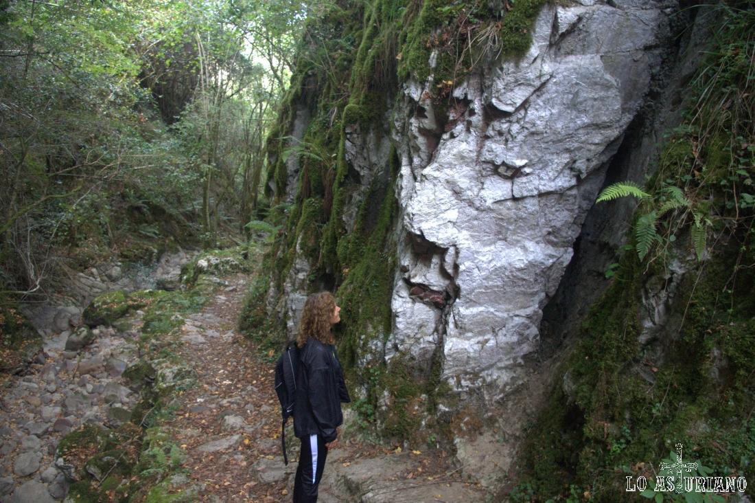 enorme cara en la piedra, nuevo ser mitológico asturiano
