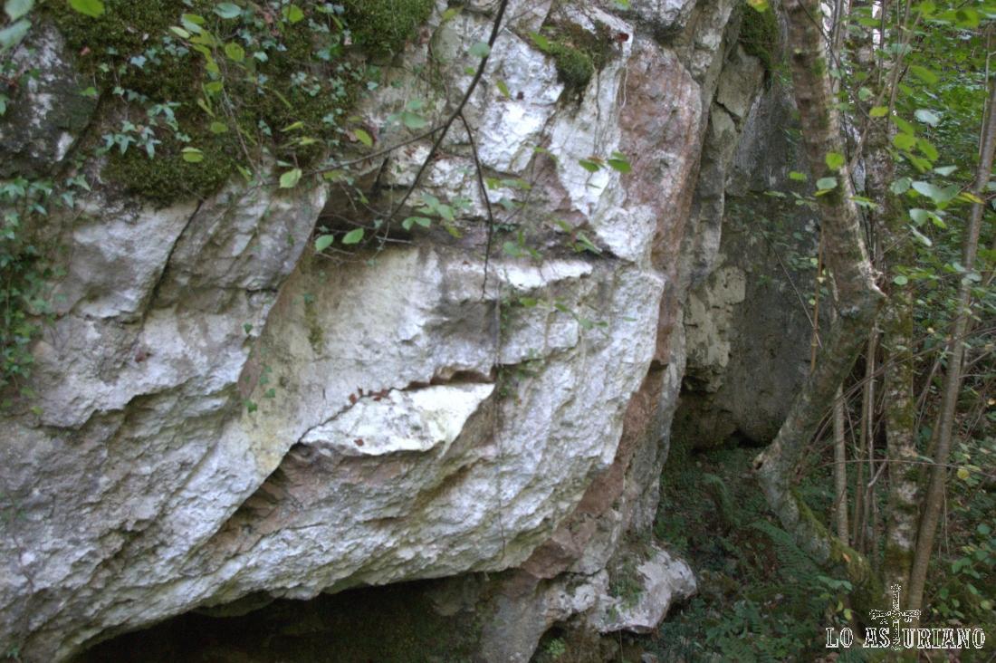Nuevo rostro, que parece emerger de la roca. Lo ves?
