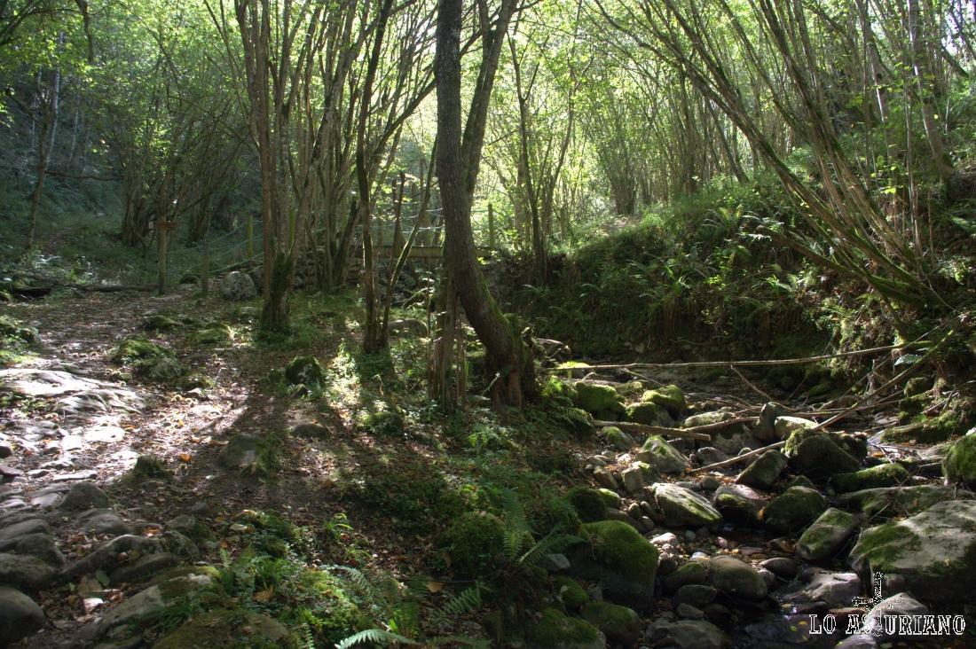 puente sobre el cauce seco del arroyo