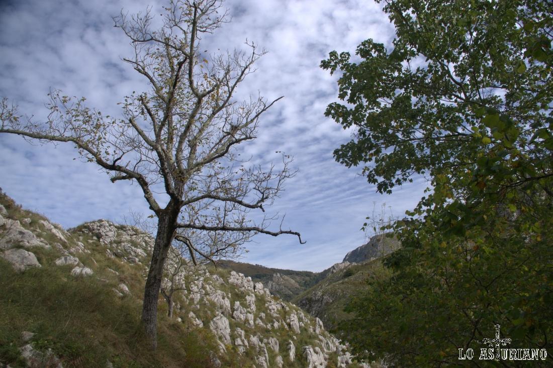 Precioso cielo en las proximidades de Pen, Amieva.