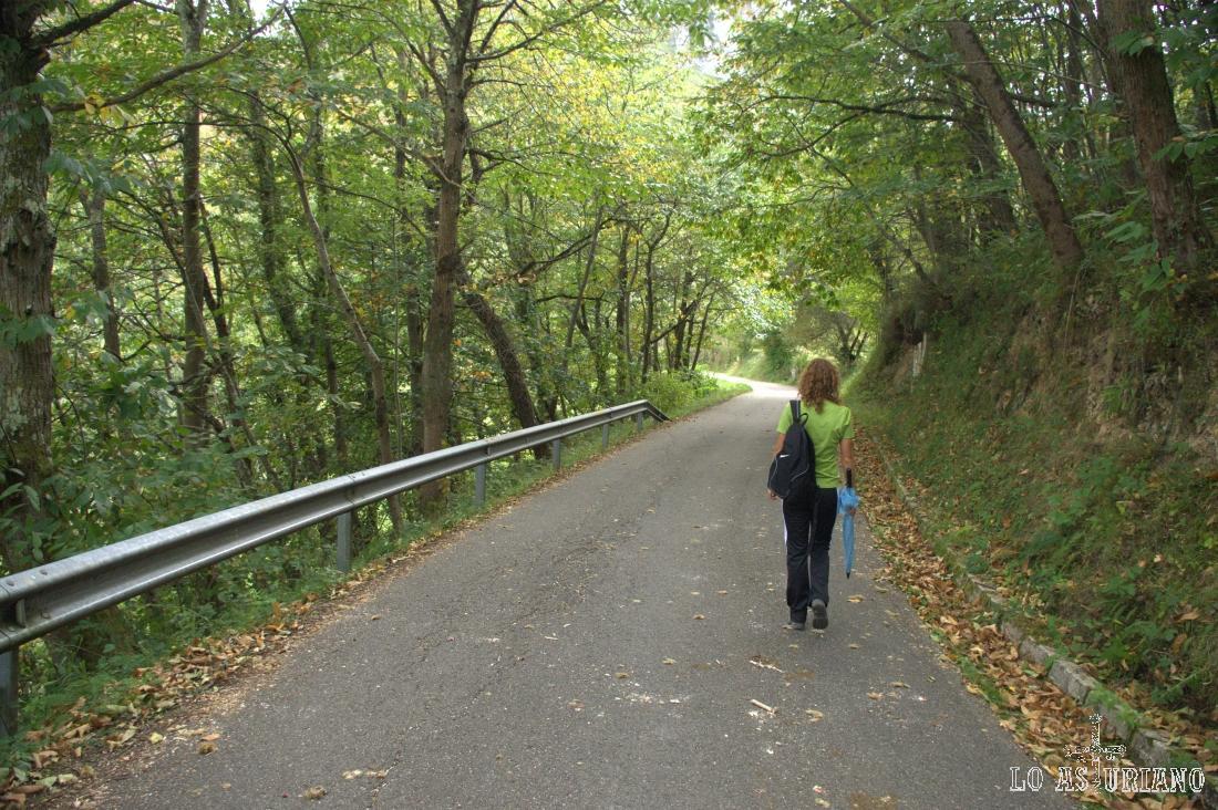 Esta es la carreterina, sin apenas tráfico, que recorremos durante únicamente 2.5 km.