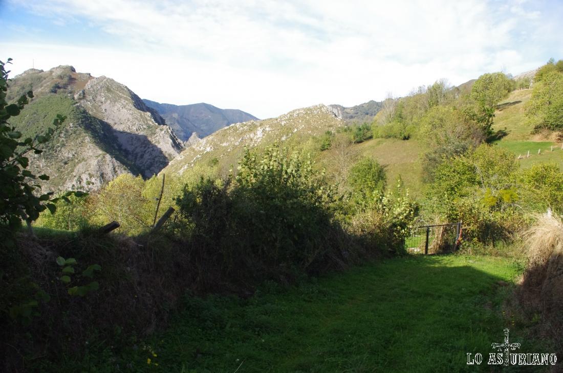 Al principio tenemos un amplio camino como enmoquetado de este precioso verde natural.