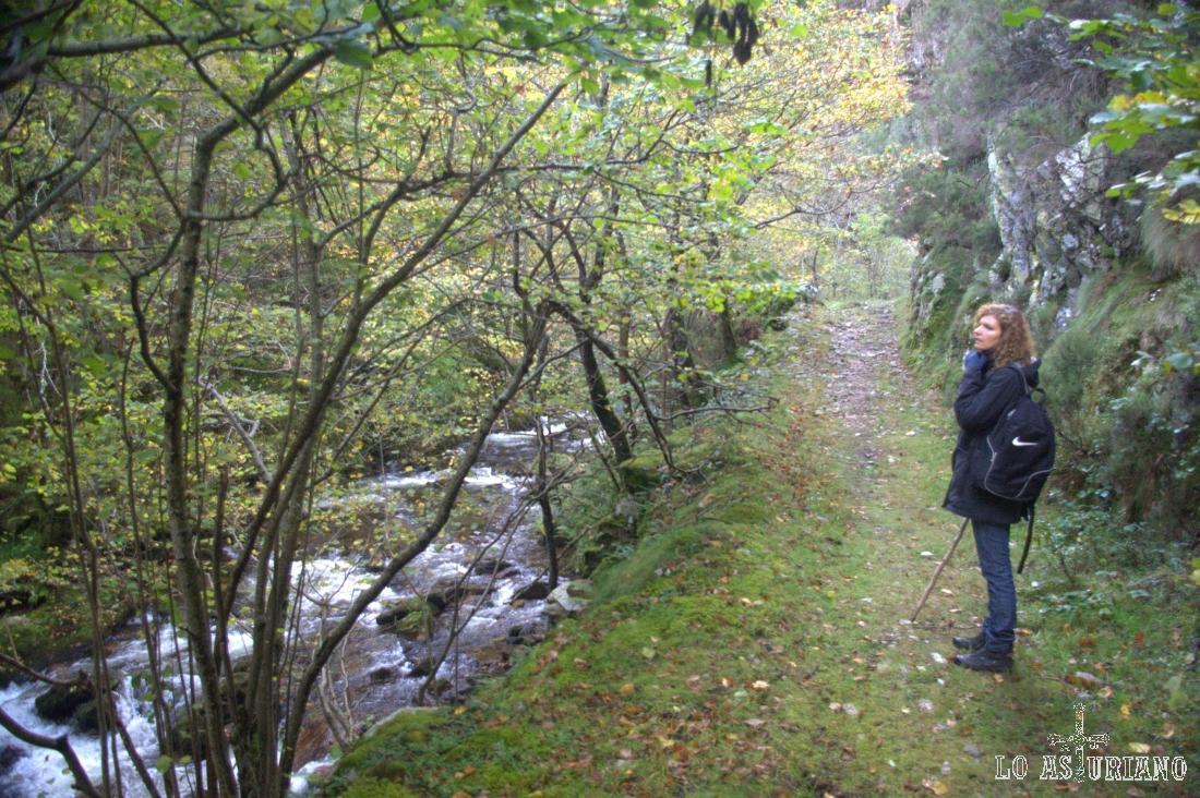 La estrechez de esta zona es importante, porque las paredes del Escobio las Torres y las laderas del Cerréu, aprisionan al río.