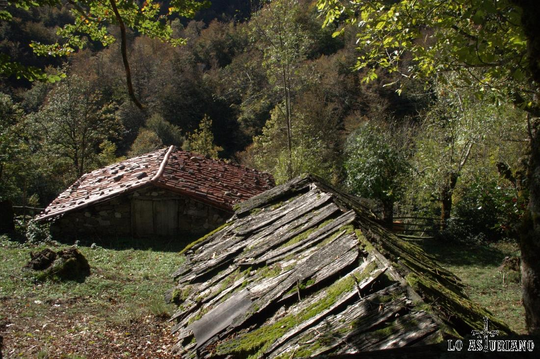 cabaña con el tejado de madera de haya
