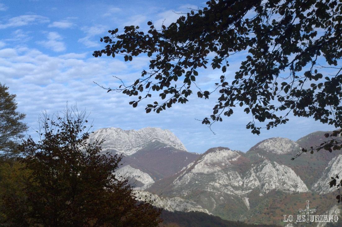 La mole del Tiatordos, con sus bosques rojizos; a su derecha, todo el Cordal de Ponga.