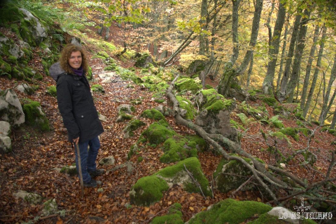 El recomendadísimo bosque de Fabucado, bajo la sierra de Pries y sobre el arroyo de Vega Pociellu.