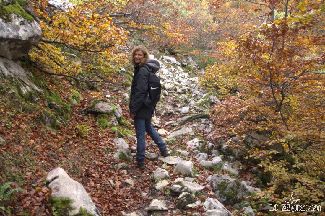 Precioso paisaje con rocas en Fabucado