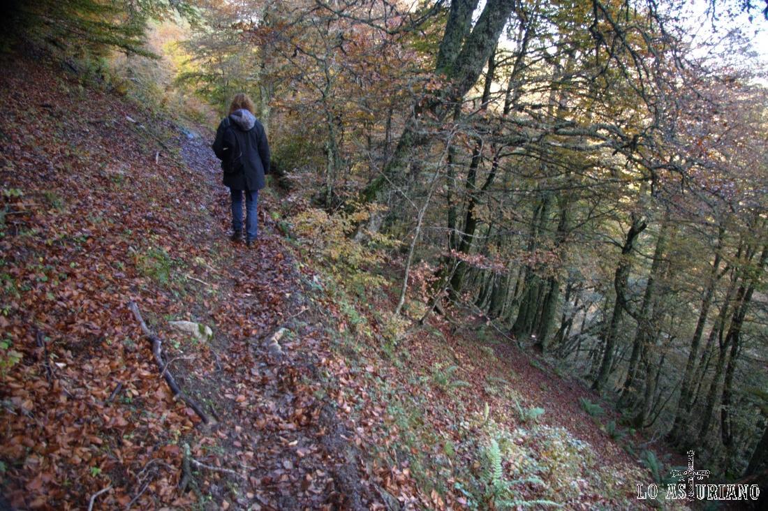 La senda nos va dirigiendo hacia la majada Cerreu.