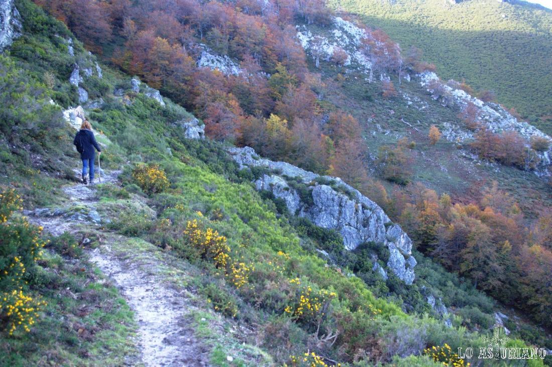 Seguimos la senda buscando la bajada al Nalón por el valle del Campón