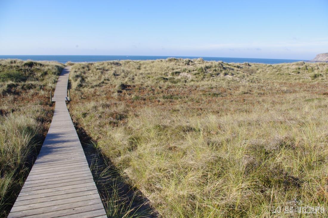 Preciosa pasarela atravesando las dunas de Xagó.