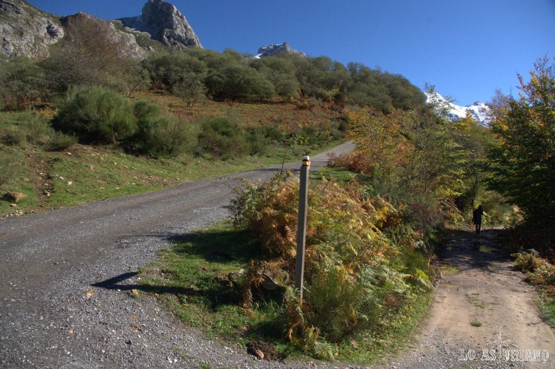 Justo en este punto, elegimos la derecha, que nos llevará por el bosque. La izquierda sube por el centro de la Pradera del Valle, que es por donde volveremos a la vuelta.