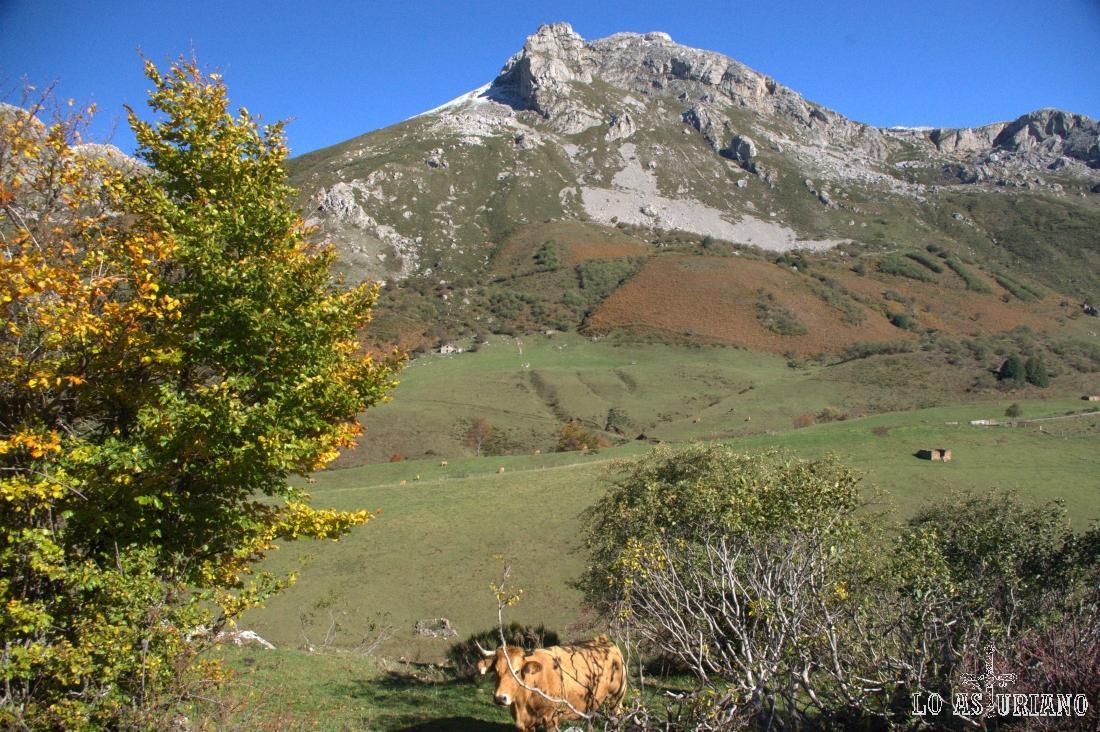 La verde pradera del Valle, en el Valle del Lago, concejo de Somiedo.