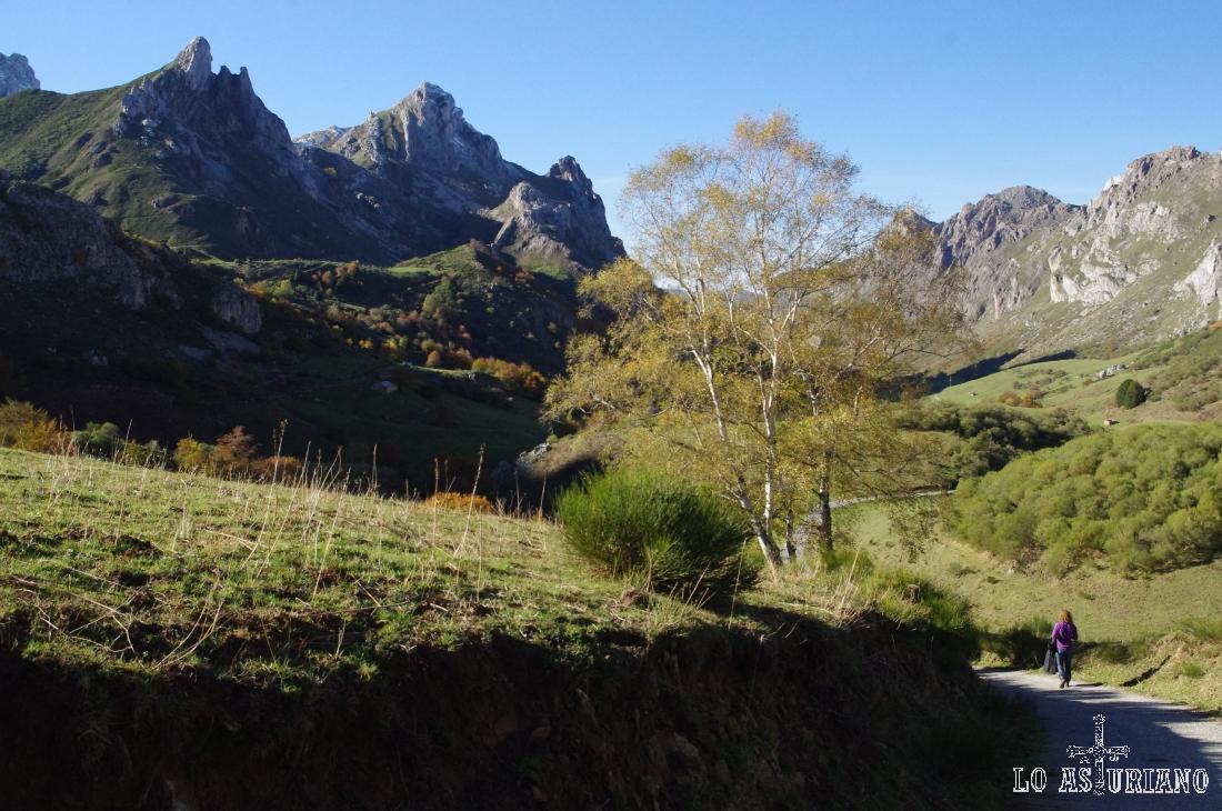 Nueva perspectiva del hermosísimo valle somedano.