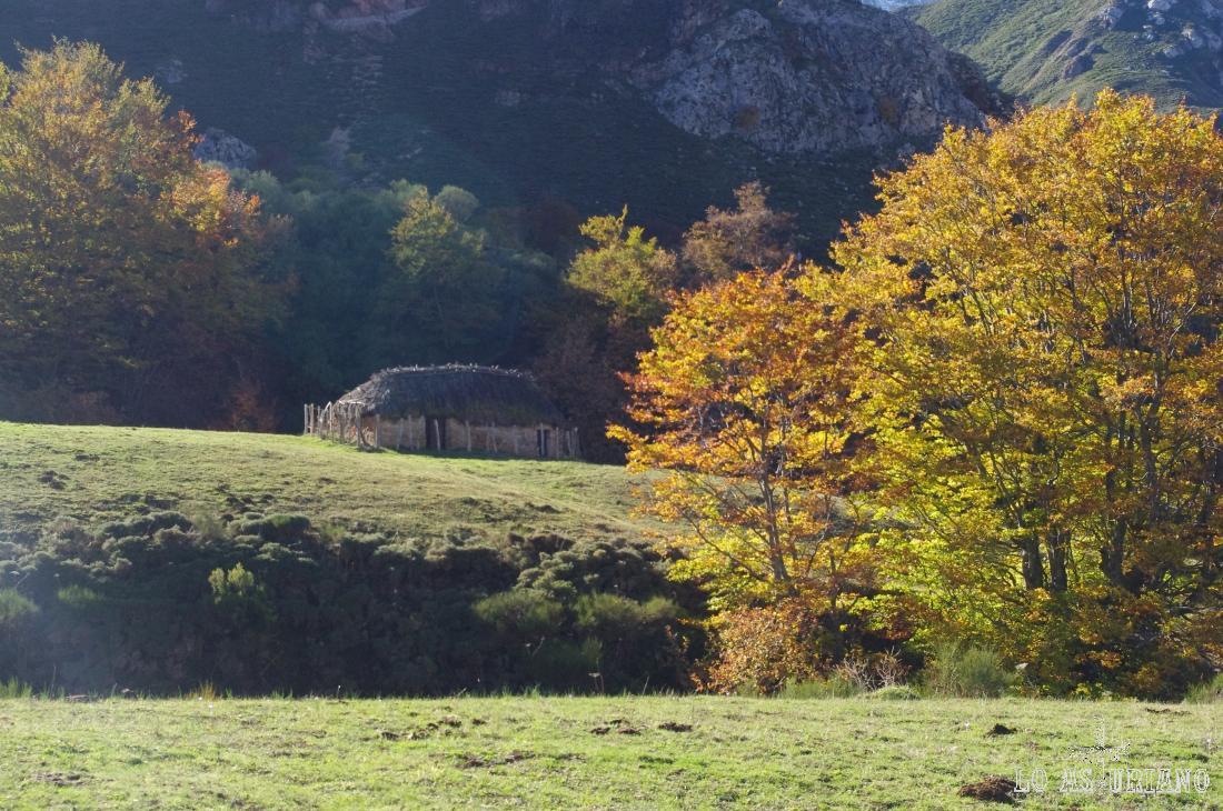 cabaña pastoril