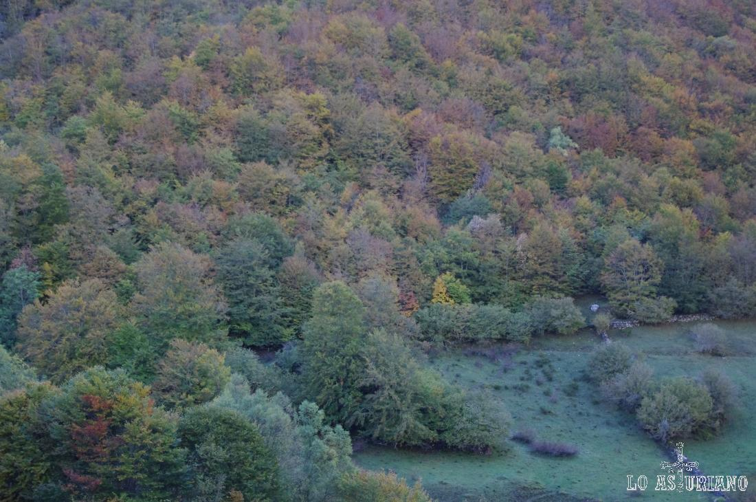 Bosques cerca del pueblo de L´Outeiro.