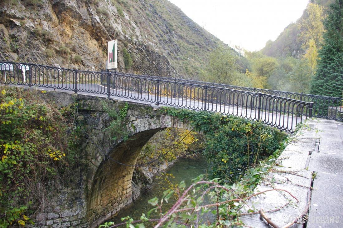 Puente sobre el río Ponga.